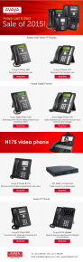 Avaya Last & Best Sale of 2015
